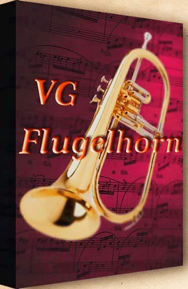 VGFlugelhorn Kontakt